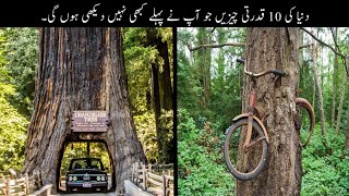 10 Unusual Nature Controling Things You Never Seen Before | قدرت کی طاقت | Haider TV