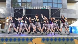 東大駒場祭 東大娘。2016/11/25~1