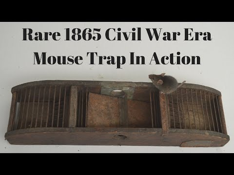 Rare 1865 Civil War Era Mouse Trap In Action With Motion Cameras. Mouse Trap Monday