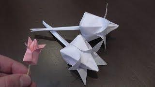 Тюльпан из бумаги / Объемный тюльпан своими руками
