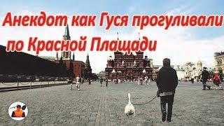 Смешно до Слёз Анекдот про гуся на  Красной Площади самый смешной шутка юмора.