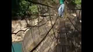 preview picture of video 'Tours-TV.com: Living bridges of Cherrapunji'