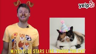 Lucas Hirl Reviews the Cat Con!