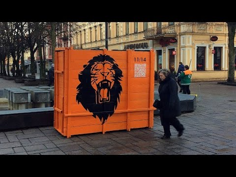 liūtai netenka riebalų