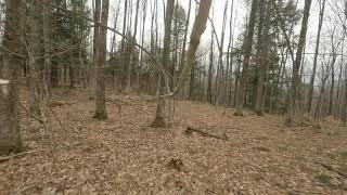Pigeon Forest State Forest in the Spring - Northern Michigan - FPV Drone 4K