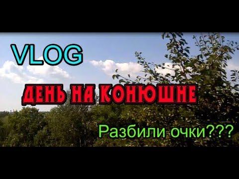 Vlog:Безумные целовашки на конюшне/Любопытное Солнышко и пропавшие лошадки