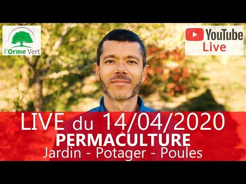 Site de rencontre kabyle gratuit