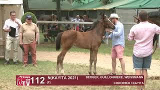 Video  de N (KAYITA 2021) #7