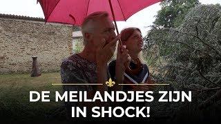 ENORM GEDOE door omgevallen boom! | Chateau Meiland