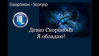 ⭐Магия Скорпионов. Знак зодиака Скорпион - врожденный психолог.