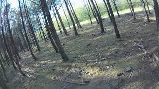 FPV BETA 75X HD en sous bois - 01 05 2021
