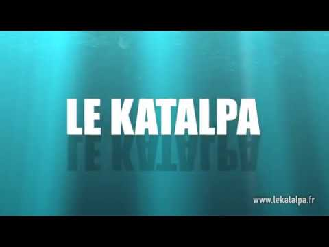 camping le katalpa,