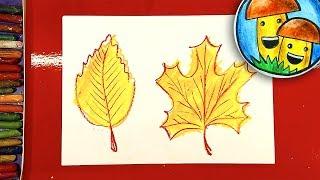 Осень и Листочки.