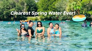 Clearest Water in Florida | Silver Glen Spring