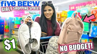 NEW GIRLY FINDS! FIVE BELOW NO BUDGET SHOPPING SPREE!