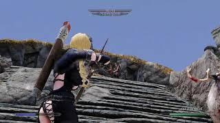 Skyrim Combat Mod: showing mod Engarde + EnaiRim against Silent Moon Camp