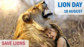 World Lion Day Status |🦁 Save Lions || World Lion Day HD Whatsapp Status Animation Effects || New