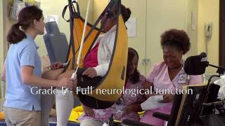 Spinal Cord Injury: Causes, Effects and Classifications