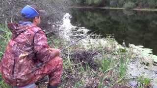 Диалоги о рыбалке - 156 - Ловля леща на Черном Иртыше. - Most ...