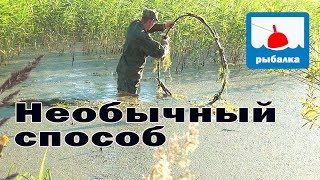 Самый простой способ рыбной ловли