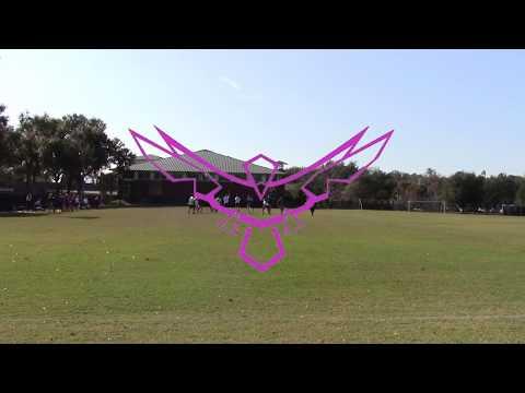 ERAU vs Stetson 2019 Ultimate Scrimmage Highlights