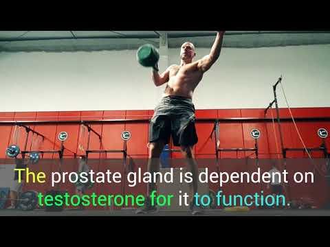 Urethritis and prostatitis temperature