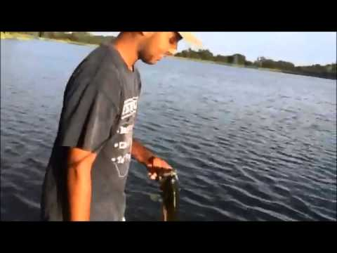 Summertime Pond Fishing | Cameron Park