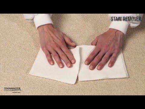 Win Against Stains with STAINMASTER™ Stain Removers