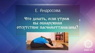 Йога для начинающих. Как сделать наклон? Пашчимоттанасана. Упражнения для спины и ног