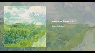 Arpeggione Sonata, D. 821