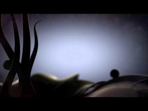 Fiore, motion graphic