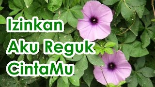 Izinkan Aku Reguk Cintamu (Covering by Als)