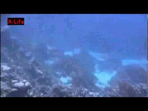 Unterwasser-Ufo, Bermuda allgemein,Bermuda