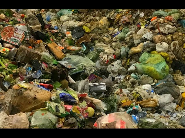 Depackaging Organic Waste for Anaerobic Digestion