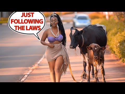 Top 10 Craziest Laws in Africa