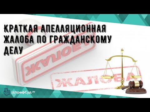 Краткая апелляционная жалоба по гражданскому делу