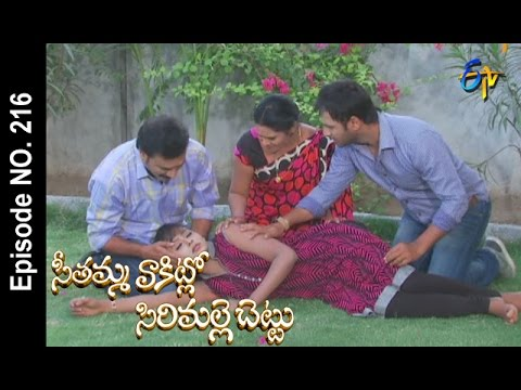 Seethamma-Vakitlo-Sirimalle-Chettu--14th-May-2016-–-Full-Episode-No-216