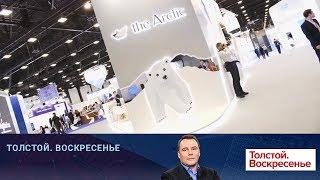Проблемы и перспективы Арктики обсудили на форуме в Санкт-Петербурге.