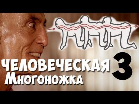 """Обзор на фильм """"Человеческая многоножка 3"""". видео"""