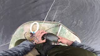 Супер рыбалка на хариуса любимая река
