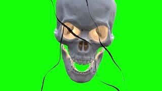 free green screen footage youtube