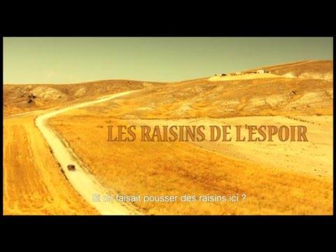 LES RAISINS DE L'ESPOIR - Bande annonce