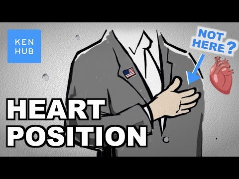 Your heart is not where you think it is - Human Anatomy | Kenhub