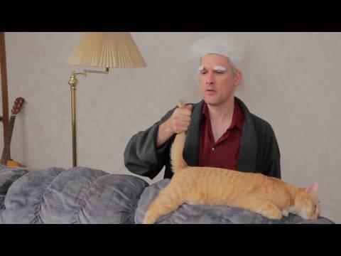 Reenactment (with cats): Princess Bride