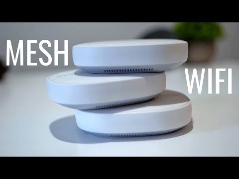 What is Mesh Wifi (& Why You Should Absolutely Get One)