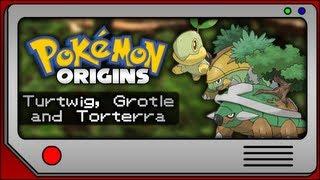 Grotle  - (Pokémon) - Pokemon Origins - Turtwig, Grotle and Torterra