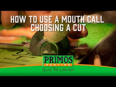 How to Use a Mouth Turkey Call - Choosing a Cut video thumbnail