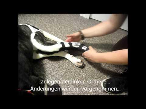 Injektionen von Hyaluronsäure in das Kniegelenk Video