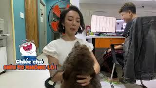 GIỚI THIỆU 2 THÀNH VIÊN ĐẶC BIỆT CỦA THU TRANG ENTERTAINMENT | Thu Trang nuôi chó
