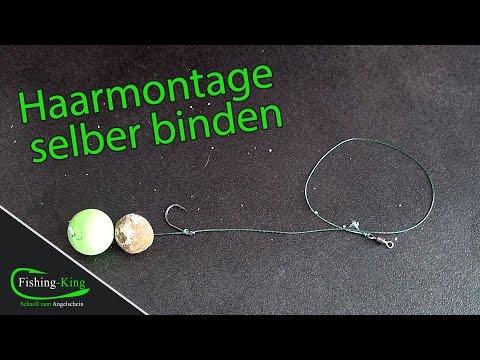 Karpfenangeln Basics: Haarmontage einfach selber binden - Tutorial   fishing-king.de